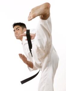 Martial Artist Kicking